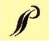 SSP Jewels Pvt. Ltd.